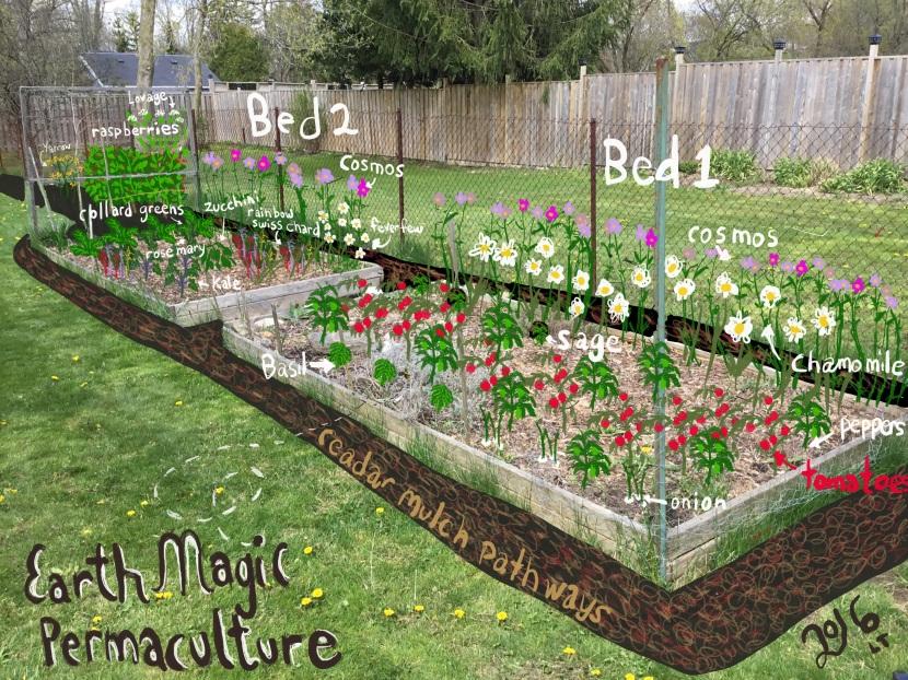 veggie garden plan